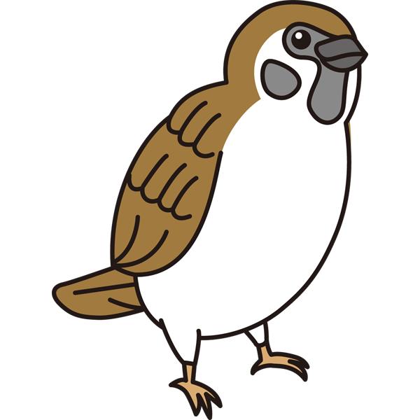 bird_23