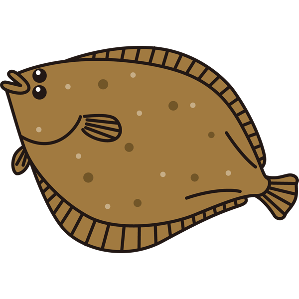 fish_13