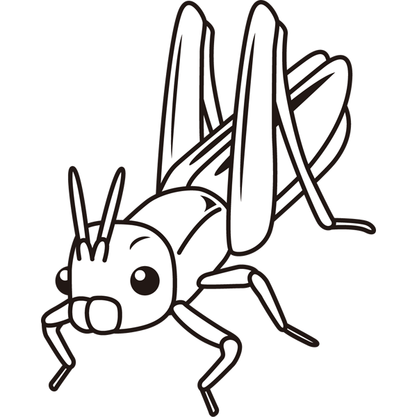 insect_20