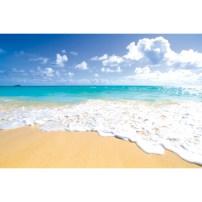 ハワイ 海 浜辺