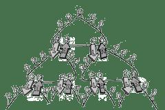 organisationen - Kreisorganisation
