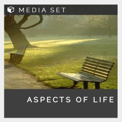 Aspects of life