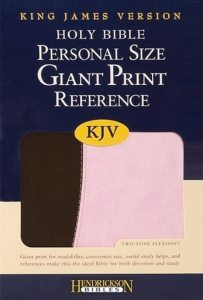 holy-bible-giant-print-pink
