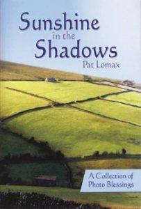 sunshine-in-the-shadows