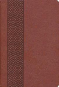 KJV Expressions Bible: Journaling Through God's Word – Brown Imitation Leather Hardcover