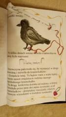 Książka Malwiny Kędroń z 6c (III miejsce)