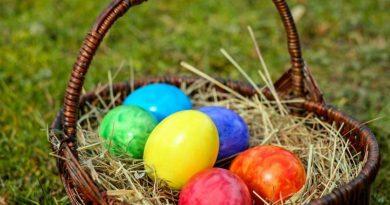 osterkorb, colorful eggs, bio