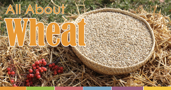 all-about-wheat-fb