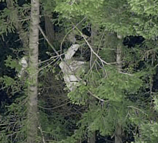Plane wreckage discovered Feb. 15, 2013. Photo: Komo News