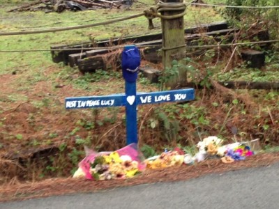 Memorial for Lucy at spot of the 1/1/13 accident on 394th PL near North Bend