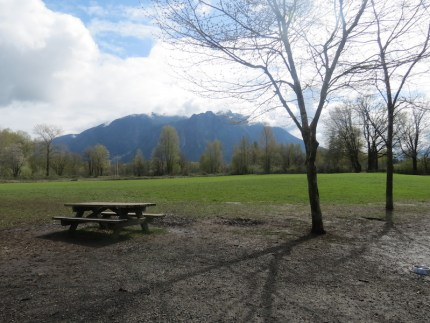Three Forks Dog Park located at 39912 SE Park Street in Snoqualmie, near Centennial Fields and Snoqualmie Elementary School.