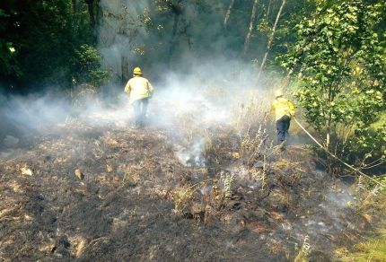 Crews work to keep I-90 brush fire from spreading into nearby woods in the summer of 2013. Photo: EF&R Facebook