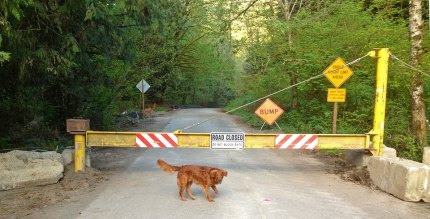 Middle Fork Road Closed. Photo: Steve Hughes