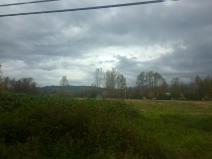 Site of proposed Snoqualmie Valley Athletic Complex along SR 202 near NW 14th Street in North Bend