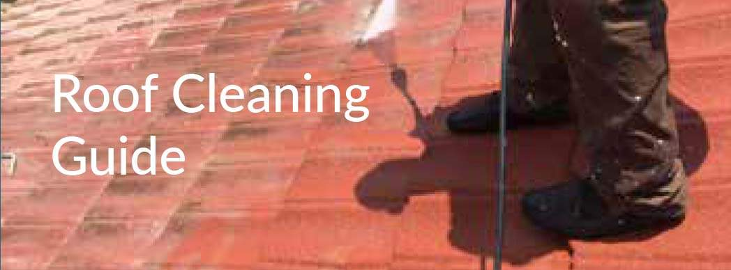 Roof Cleaning Guide