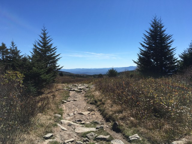 A dirt and rocky path on Mt Rogers points the way to views of distant mountain ranges.