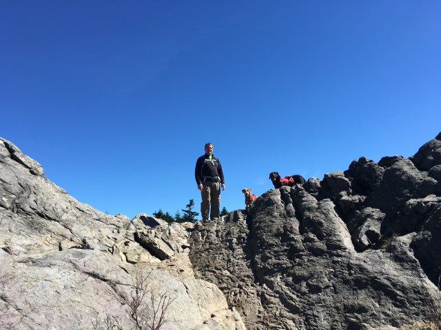 My husband and our 2 labradors look down from atop a gray rocky outcropping.