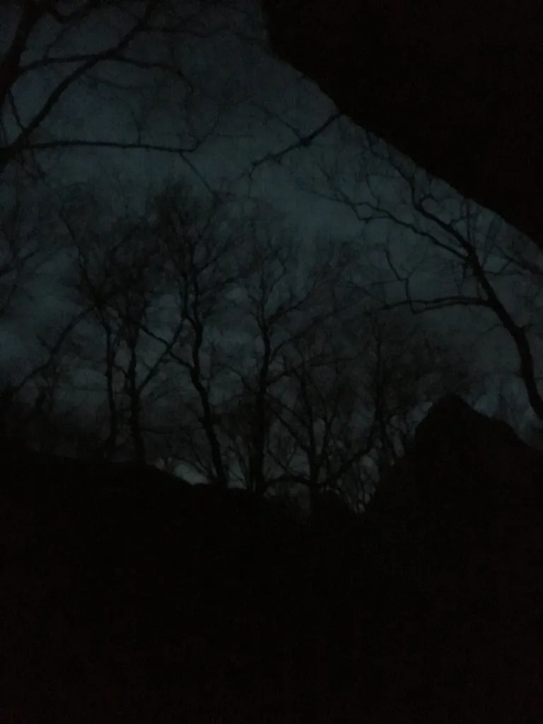 Leafless trees silhouetted against a dark grey sky and bordered by large black rocks