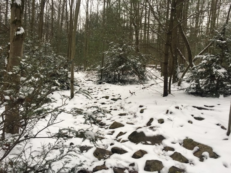 A snow covered rocky trail bordered by trees dripping with snow