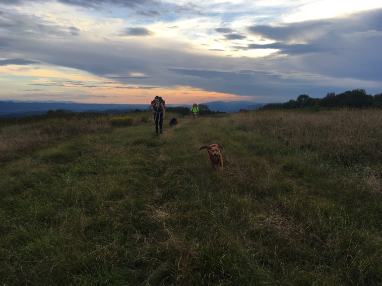 2 backpackers and 2 hiking dogs walk at the top of a mountain during sunset