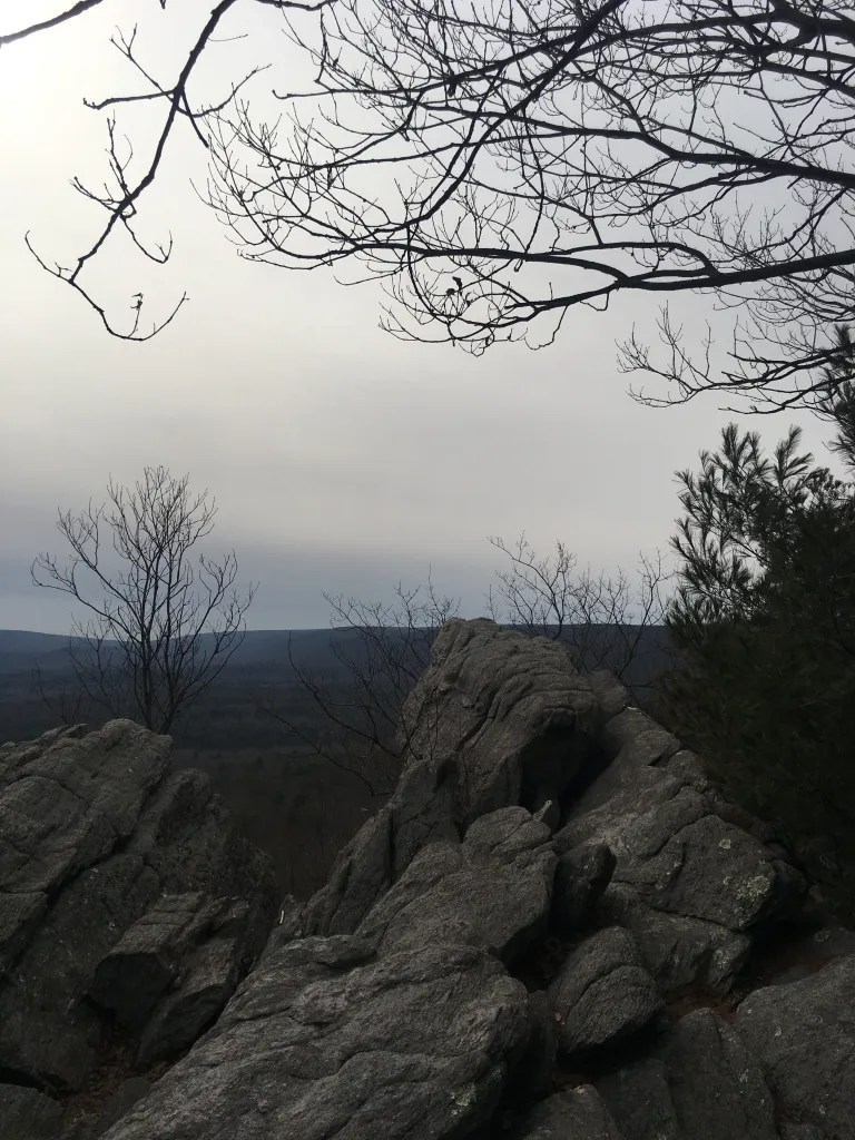 Large rocky outcropping in the foreground, leafless winter tree branches silhouetted against a gray winter sky