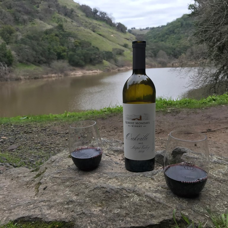 A bottle of wine with 2 stemless glasses sit on a rock, a mountain lake visible in the background