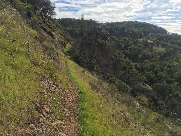 A thin dirt trail hugs the side of a mountain, a steep hillside visible to the right