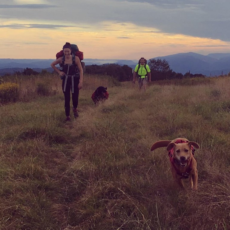 Backpacking dogs, a woman and a man walking at sunset in the mountains.