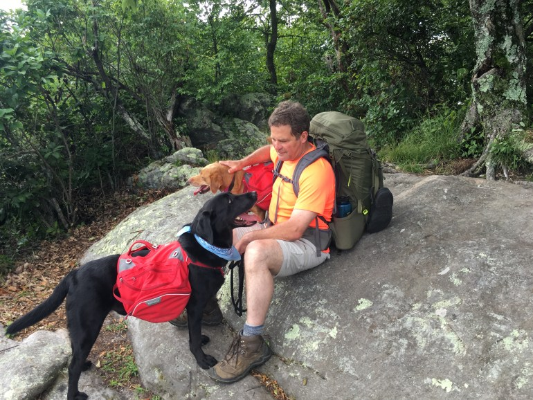 Man backpacker sitting on a big boulder with 2 backpacking dogs