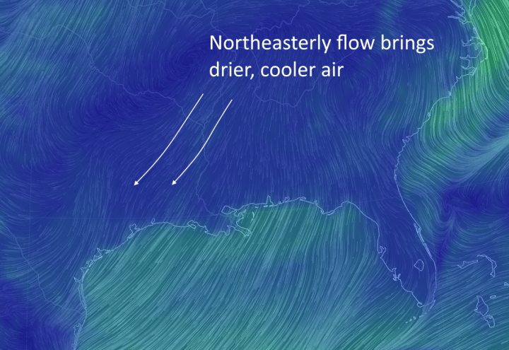 Drier, northeasterly air will provide for pleasant conditions on Friday and Saturday. (earth.nullschool.net)