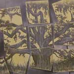Drawings, Graphics, Collages, Printmaking & Paper - 2nd Place - Michael Everett
