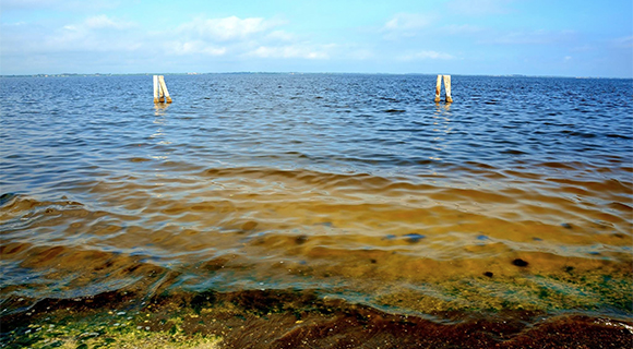 The Brevard County Commission approved an agreement with the Florida Department of Environmental Protection (DEP) on Tuesday for an additional $800,000 in funding for a project to reduce pollution, identify sources of muck, and reduce muck inputs to the Indian River Lagoon.