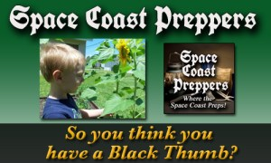 So you think you have a Black Thumb? - Space Coast Preppers.com