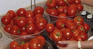 Survival Garden Food - Space Coast Preppers.com