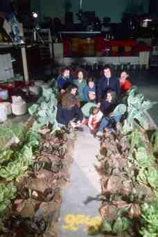 9999 and family sitting inside the vegetable garden.