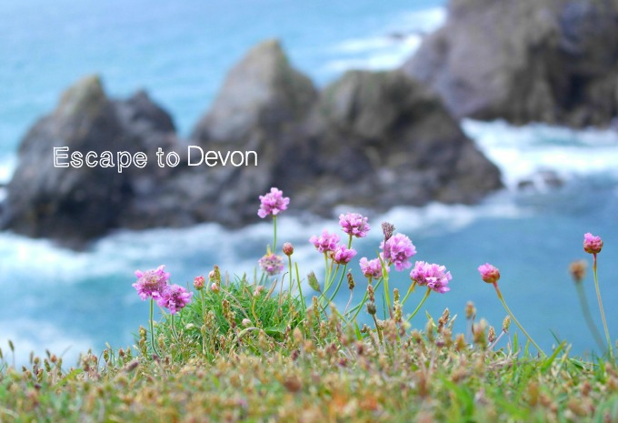 Escape to Soar Mill Cove in Devon