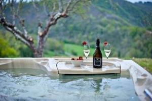 La Ferme du Cayla will take care of your kids while you indulge in champagne in the hot tub to the stunning view
