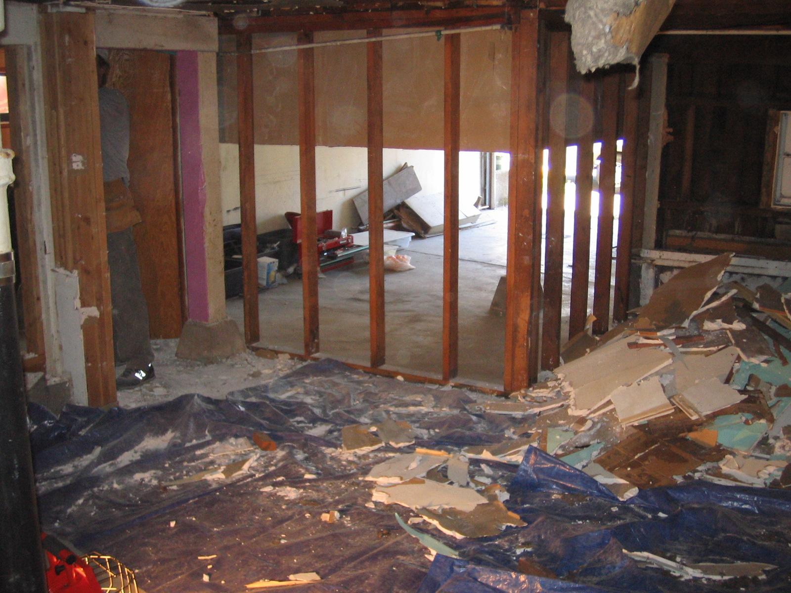 basement gutting