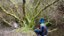Nature Walk - Observing