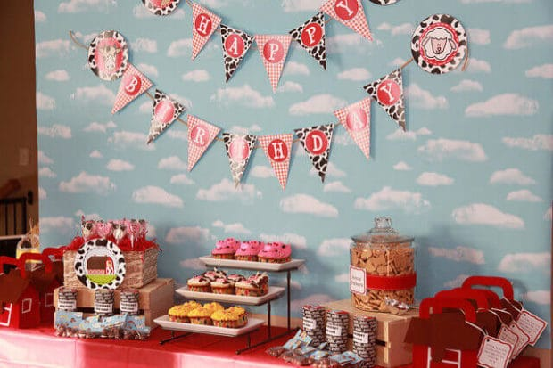 boys birthday party barnyard decoration ideas
