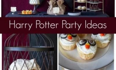 Unique Harry Potter Birthday Party Ideas
