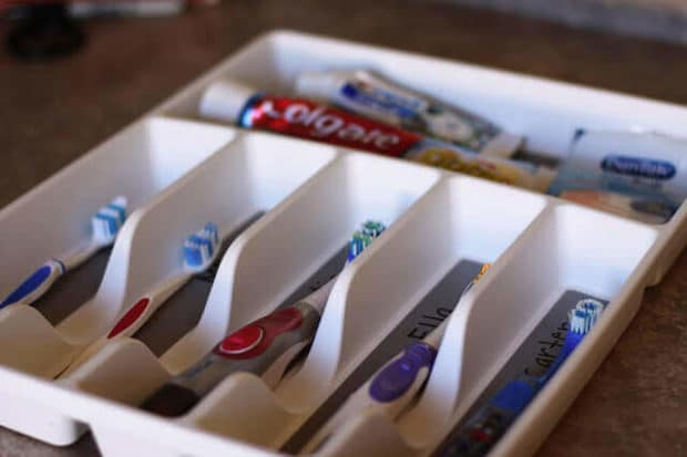 Cutlery Organizer Toothbrush Holder