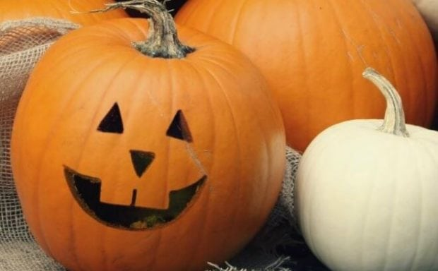 Free Pumpkin Carving Stencils and