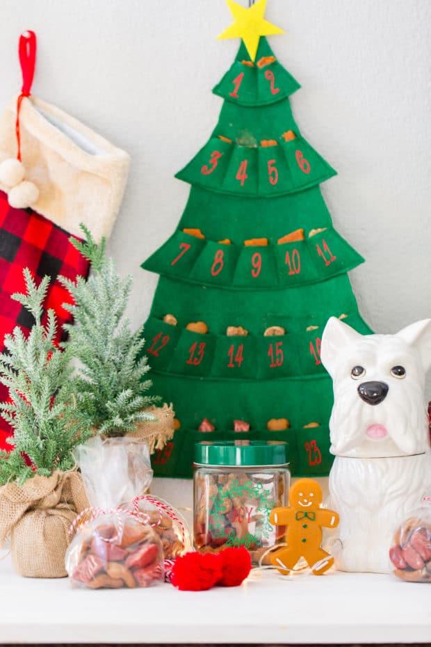 Dog Christmas Ideas