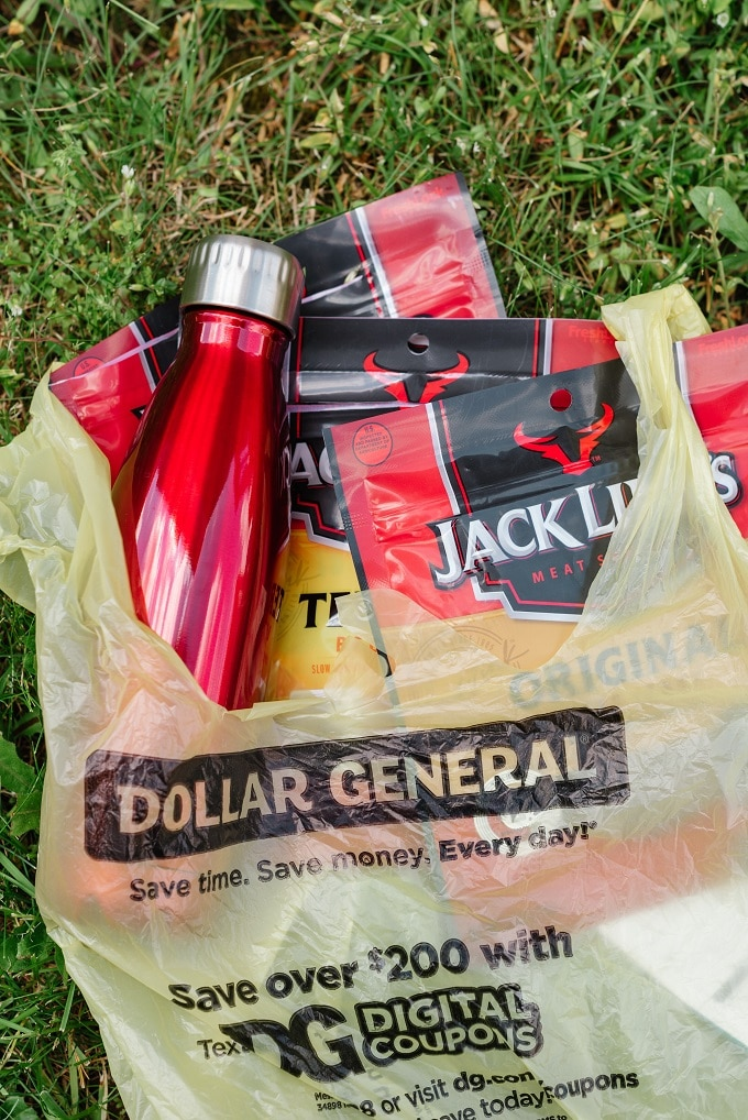 Favorite Products at Dollar General