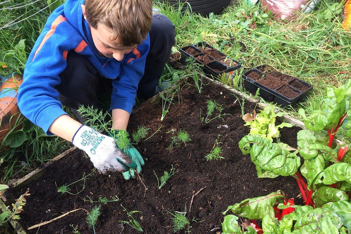 School Garden Group