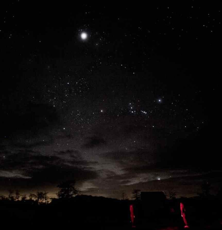 Stargazing Spots in Miami - Big Cypress National Park - TierraLady Via Flickr