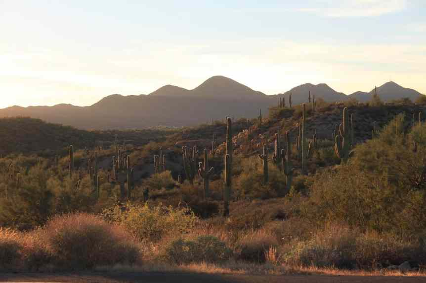 Stargazing near Phoenix - McDowell Mountain Regional Park - maplegirlie via Flickr