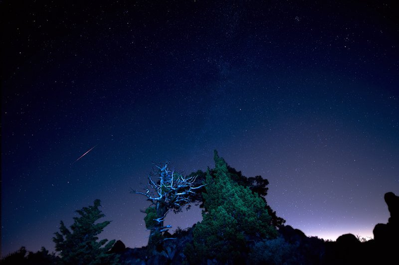 Must-See Night Sky Events in August - Perseids - Tucker Hammerstrom via Flickr