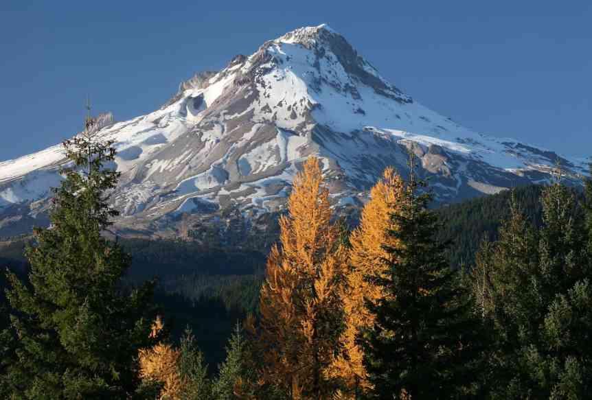 Stargazing near Portland - Larch Mountain - US Forest Service